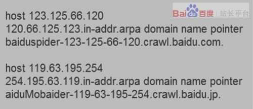反查IP的方式识别百度蜘蛛